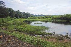 Uganda – Kipedo Nationalpark soll für Safari-Reisen zugänglicher werden