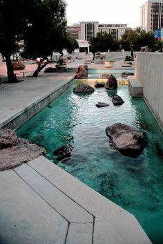 Garrett Eckbo Landscape at the Tucson Convention Center. Photo credit: Fotovitamina, 2012