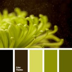 Free collection of color palettes ideas for all the occasions: decorate your house, flat, bedroom, kitchen, living room and even wedding with our color ideas   Page 308 of 363.