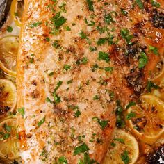 Garlic-Butter Salmon - This is the only baked salmon recipe you'll ever need. -Baked Garlic-Butter Salmon - This is the only baked salmon recipe you'll ever need. Fish Dinner, Seafood Dinner, Seafood Bake, Butter Salmon, Good Food, Yummy Food, Tasty, Salmon Dishes, Salmon Meals