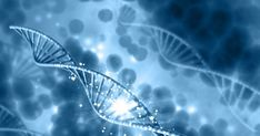 Scientists Uncover Genes That May Help Combat Aging and Disease
