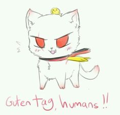Prussia cat idk his Nekotalia cat pun name if it I was right I'm done