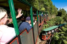 Driving Creek Railway, Potteries & Coromandel Zipline Tours - narrow-gauge mountain railway, built mostly by hand by Barry Brickell & New Coromandel Zipline Tour Kiwiana, Train Rides, New Zealand, Discovery, Places To Go, Pottery, Tours, Cruises, Building