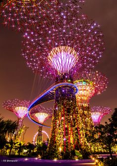 """Travel around the world  """"Gardens by the bay - Electrified!!!"""" by AJ Photography"""