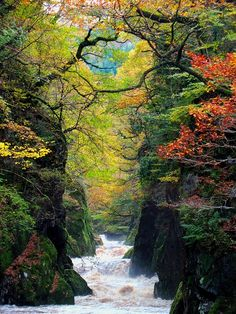 The Fairy Glen Gorge, Conwy River, Wales                                                                                                                                                     More