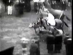 Gallant Fox--Triple Crown winner and another classic American horse racing champion.  I love watching these old videos of past racing champions as they also provide snapshots of American history.