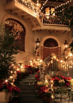 Christmas 2021 New Orleans 750 New Orleans Ideas In 2021 New Orleans Orleans Hotel Monteleone