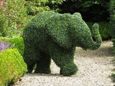 animal landscape art