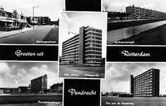 Rotterdam, Desktop Screenshot, Mario