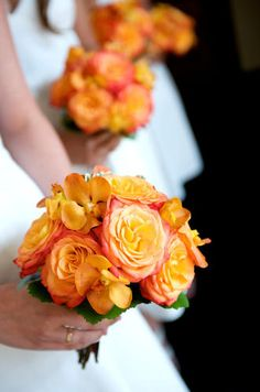 circus roses & orange orchid blooms...really like