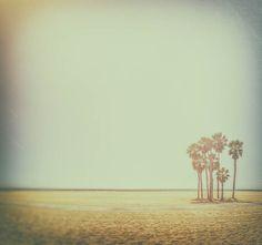 Beach Photography, Palm Tree, Santa Monica Beach, Sunset, Warm Summer, Ocean, Waves, Seaside, Blue Ocean, VIntage Photo, Old