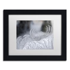 Kurt Shaffer 'February Window Frost' White Matte, Framed Wall Art