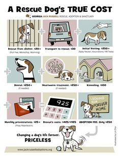 Think a rescue's adoption fee is a little steep? See what the true costs (and rewards) are of changing a rescue dog's life forever with this illustration from Lili Chin of Doggie Drawings and GA Jack Russell Rescue, Adoption & Sanctuary.