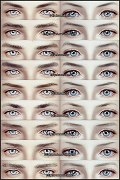 EyeBrows wbr Collection by Ephemera