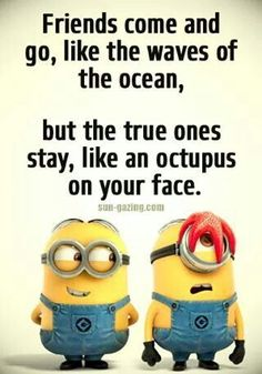 Top 30 Funny Minions Friendship Quotes - Quotes and Humor Bff Quotes, Cute Quotes, Funny Quotes, Funny Minion Memes, Minions Quotes, Minion Sayings, Hilarious Jokes, Fun Funny, Funny Humor