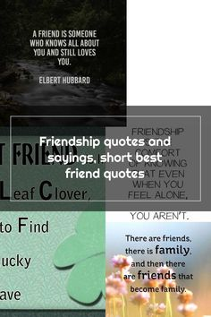 Friendship quotes and sayings, short best friend quotes Short Best Friend Quotes, Short Friendship Quotes, Feeling Alone, Still Love You, Best Friends, Feelings, Sayings, Beat Friends, Bestfriends