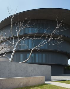 Gallery of Tadao Ando Completes the He Art Museum in China - 3 Most Successful Businesses, Round Building, Chinese Contemporary Art, China Image, Outdoor Theater, Tadao Ando, New Museum, Tree Sculpture, Exhibition Space