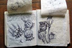 kelley123:  Kerrys' Sketchbook 2004- Present, pages 97-98 under paper (by Mark Bedlam)