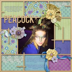 Peacock - The Digichick Gallery