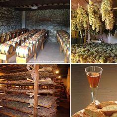 The ancient art of making Vin Santo - Tuscany's wonderful dessert wine.