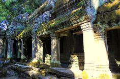 Ta Prohm, Siem Reap, Indiana Jones, Angkor Vat, Travel Pics, Direction, Hui, Temples