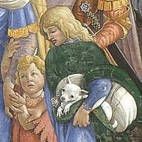 Some historians believe the Chihuahua came from the island of Malta in the Mediterranean.[6] Some evidence lies in European paintings of small dogs that resemble the Chihuahua. One of the most famous paintings is a fresco in the Sistine Chapel by Sandro Botticelli dated 1480-1482 which depicts the Trials of Moses. The fresco shows a boy holding a tiny dog with round head, large eyes, big ears, characteristics of the Chihuahua.[7] This was ten years before Columbus returned from the New…