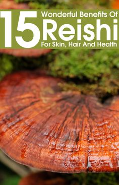 15 Wonderful Benefits Of Reishi For Skin, Hair And Health Ever heard of Reishi mushroom? This is a herbal mushroom with miraculous medicinal benefits. Read to learn the Reishi mushroom benefits for skin, hair & health! Calendula Benefits, Lemon Benefits, Matcha Benefits, Coconut Health Benefits, Protein Muffins, Halloumi, Mushroom Benefits, Benefits Of Mushrooms, Pseudo Science