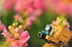 Lego photographer...