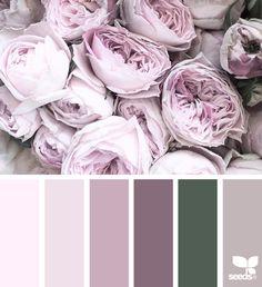 Flora Tones via @designseeds