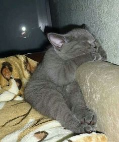 Now I lay me down to sleep, I pray....