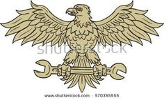 Drawing sketch style illustration of an american bald eagle looking to the side clutching spanner with its talon set on isolated white background viewed from front.  #baldegle #sketch #illustration