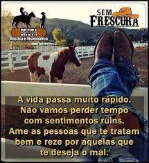 Resultado De Imagem Para Vaqueira Frases Frases De Cavalo