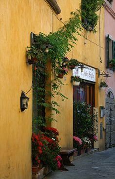 Lucca,Toskana,Italy #Italy #Travel #Beautifulworld