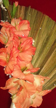 103 Delightful Jumping The Broom Samples Ideas Don Ts Images