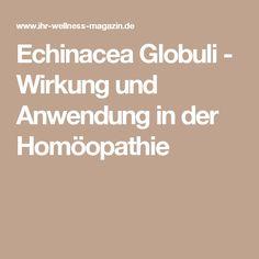 Echinacea Globuli - Wirkung und Anwendung in der Homöopathie