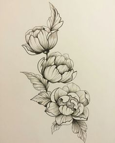 Botanical Line Drawing, Floral Drawing, Dove Tattoos, Flower Tattoos, Body Art Tattoos, Best Tattoo Ever, Pen And Wash, Temp Tattoo, Tole Painting Patterns