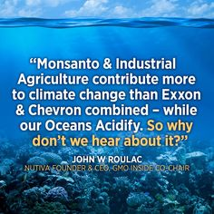 """""""Monsanto and the corporate media are not telling the world that we're rushing to an ocean apocalypse."""" Get the full story via EcoWatch from Nutiva founder & CEO John Roulac. #climatechange #ocean"""