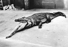 Helmut Newton: A Scene from Pina Bausch's Ballet, 1983 – OCAIW