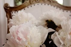 greige: interior design ideas and inspiration for the transitional home : Simple Peony boquet..