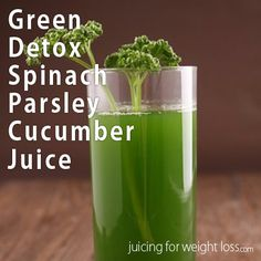 "If you are looking for a simple and cleansing green juicing recipe that is also low is calories this recipe will do the trick. This recipe is also surprising mild for a green juice versus some of the other ""green"" detox recipes."