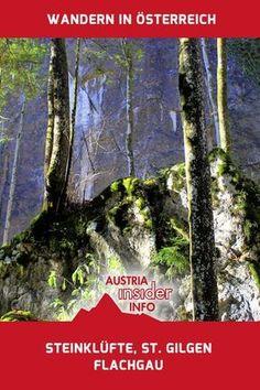 Steinklüfte in St. Gilgen am Wolfgangsee Heart Of Europe, Austria, Wanderlust, Around The Worlds, Hiking, Mountains, Nature, Travel, Holiday Destinations