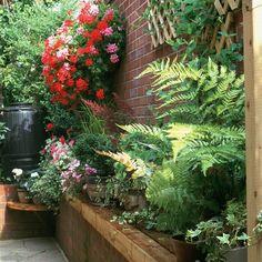 Don't neglect shady or narrow alleyways; make them part of the garden using trellis plants and shade-loving ferns. Narrow Patio Ideas, Narrow Garden, Side Garden, Lawn And Garden, Garden Paths, Patio Plants, Garden Planters, Porches, Garden Design Software