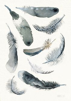 Black and white Feather art print 9 soaring downs by TheClayPlay More