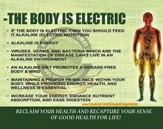 the body is electric alkaline dr. sebi the body is electric alkaline dr. Health Facts, Health And Nutrition, Health Fitness, Holistic Remedies, Natural Health Remedies, Dr Sebi Diet, Alkaline Diet Recipes, Alkaline Foods Dr Sebi, Health Heal