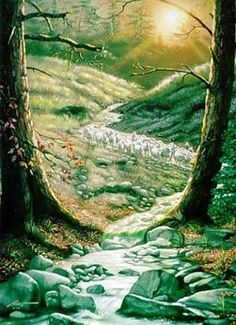 a look at this amazing Forest Face Optical Illusion illusion. Browse and enjoy our huge collection of optical illusions and mind bending images and videos. Optical Illusion Paintings, Optical Illusions Pictures, Illusion Pictures, Illusion Drawings, Illusion Kunst, Illusion Art, Hidden Images, Hidden Pictures, Wierd Pictures