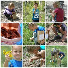 outdoor scavenger hunt worksheet for children