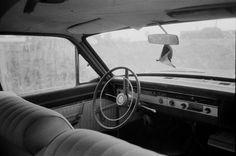 RAMÓN GRAU. Director of Photography: Resultados de la búsqueda de marc y pili