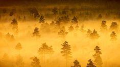 Tromso National Park, Finland (© Teemu Tretjakov/500px)