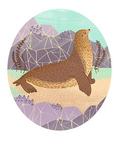 Galapagos Sea Lion Art Print by Rachelignotofsky on Etsy, $17.00
