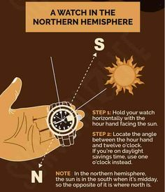 If push comes to the shove and you need to find the true north without a compass, you must know how to do that to survive. We'll tell you how today! Survival Life, Survival Food, Camping Survival, Outdoor Survival, Survival Skills, Facing The Sun, Daylight Savings Time, True North, Cursed Child Book